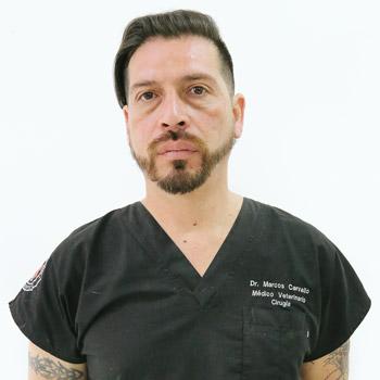 Marcos Carvallo